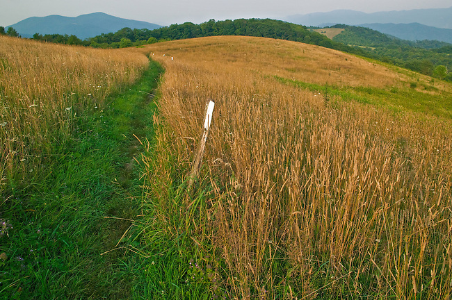 The Appalachian Trail across Max Patch Mountain, Pisgah National Forest