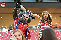 Frisco, TX - Sunday September 03, 2017: FC Dallas Mascot during a regular season National Women's Soccer League (NWSL) match between the Houston Dash and the Seattle Reign FC at Toyota Stadium in Frisco Texas. The match was moved to Toyota Stadium in Frisco Texas due to Hurricane Harvey hitting Houston Texas.