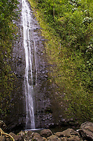 The popular hike to Manoa Falls rewards with beautiful scenery.