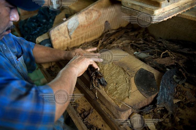 A worker at the Cigarros Joyas de Panama factory rolls a cigar.