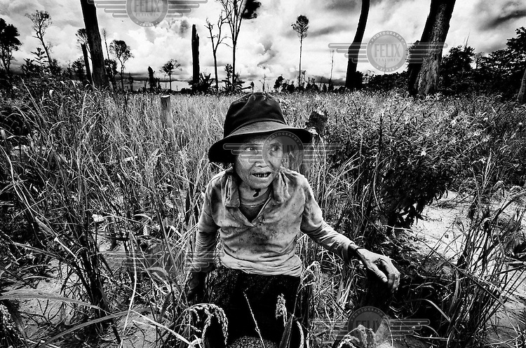 An elderly member of the Alouwa family, whose rice field was cleared of cluster munition by the de-mining team of Handicap International..