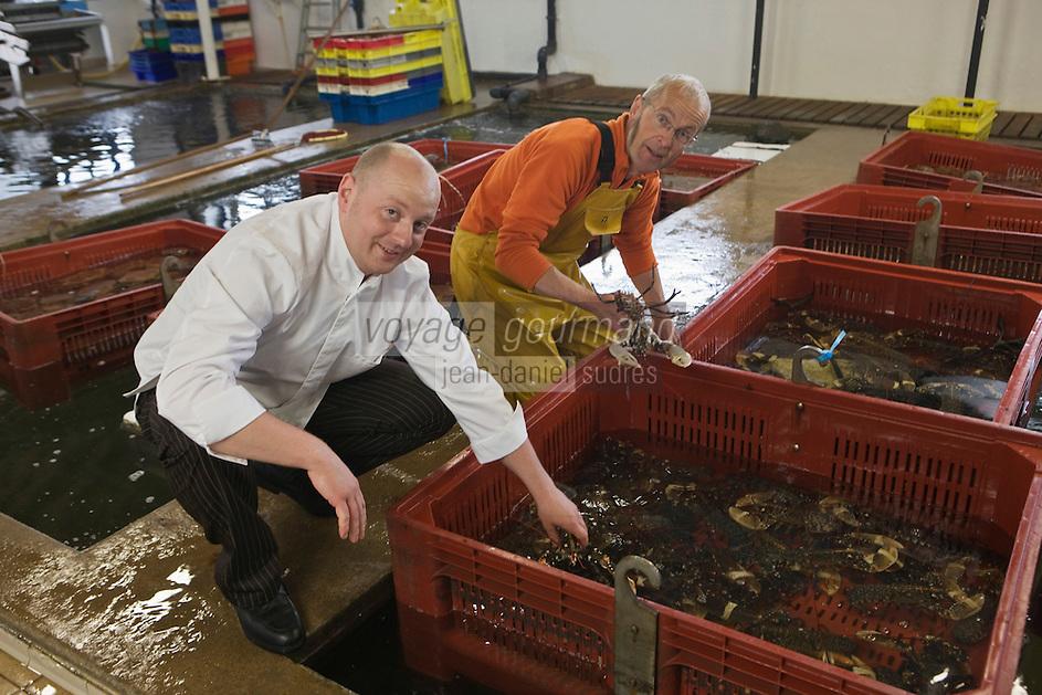Europe/France/Bretagne/22/Côtes d'Armor/ Paimpol: Vincent Prémorvan du Restaurant: La Cotriade  achète ses homards aux Viviers Dauphin