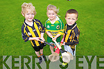 Bobbie Fitzpatrick, Doireann Hegarty, Luke Morris enjoying the Abbeydorney GAA, summer Cul Camp on Monday