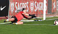 20200307  Parchal , Portugal : Belgian goalkeeper Justien Odeurs (1) pictured during the female football game between the national teams of Belgium called the Red Flames and Portugal on the second matchday of the Algarve Cup 2020 , a prestigious friendly womensoccer tournament in Portugal , on saturday 7 th March 2020 in Parchal , Portugal . PHOTO SPORTPIX.BE | DAVID CATRY