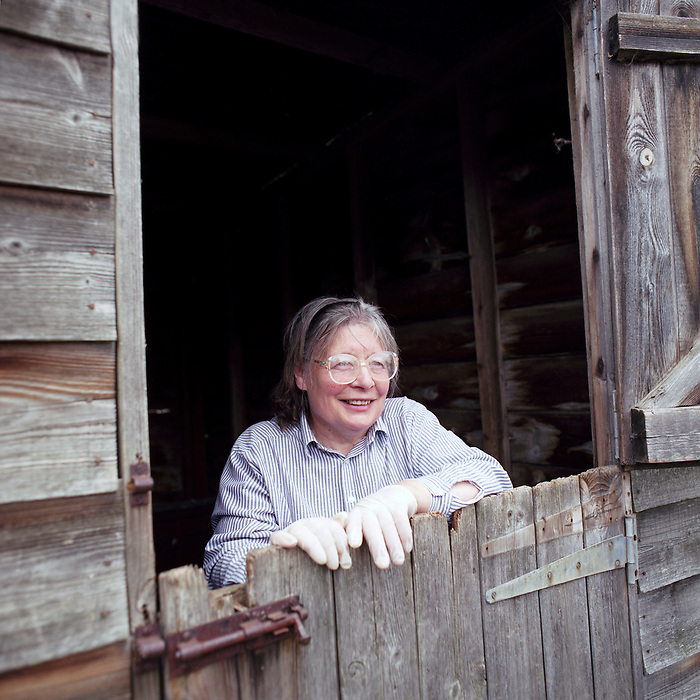 Re- Home Series. Kent, UK. 2009. Diana Millard at her shed/hen house. Her back garden has been completely turned into hen houses to hold the hundreds of hens she rescues every month. They are then adopted by families after she has checked them for disease and inoculated them.