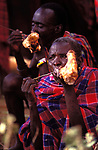 A Maasai elder at a feast as part of the initiation into manhood of the Moran.  <br /> The Maasai are known for their prolific meat eating.<br /> Kajiado, Kenya.