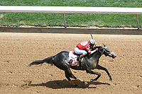 HOT SPRINGS, AR - April 15: Leofric #8 and jockey Javier Castellano win the third race at Oaklawn Park on April 15, 2017 in Hot Springs, AR. (Photo by Ciara Bowen/Eclipse Sportswire/Getty Images)