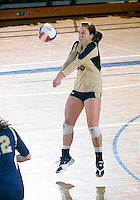 Florida International University women's volleyball player Chanel Araujo (13) plays against Tulane University.  FIU won the match 3-2 on September 9, 2011 at Miami, Florida. .