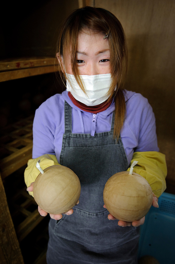 """A worker holds two fireworks at Katakai Fireworks Co., Ltd, Katakai, Japan, April 6, 2009. The company makes the world's largest firework, a 120cm round shell called a """"yonshakudama""""."""