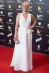 Cayetana Guillen Cuervo attends red carpet of Feroz Awards 2018 at Magarinos Complex in Madrid, Spain. January 22, 2018. (ALTERPHOTOS/Borja B.Hojas)