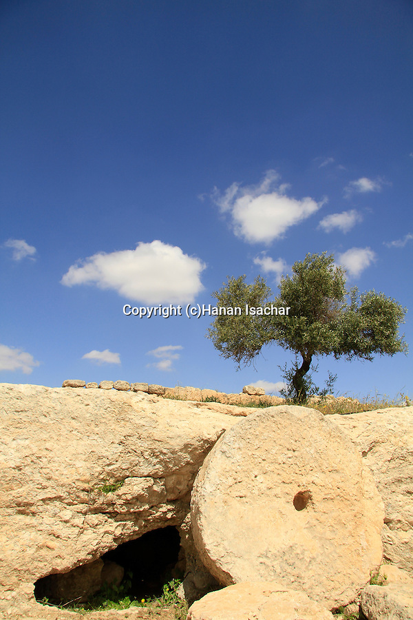 Southern Hebron Mountain, a burial cave in ancient Susya