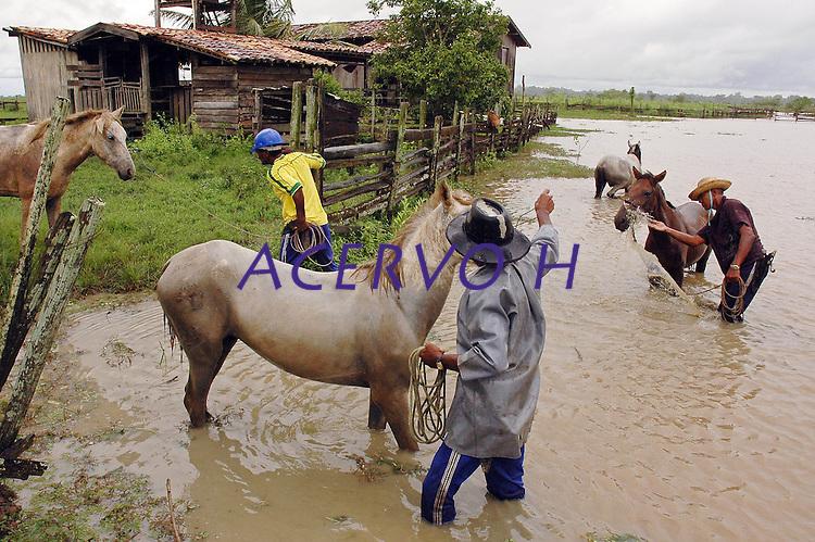 Vaqueiros lavam seus cavalos, ap&oacute;s a volta do campo, fazenda Tuiuiu.<br /> Cachoeira do Arari, Par&aacute;, Brasil.<br /> 08/05/2006<br /> Foto Paulo Santos/Interfoto