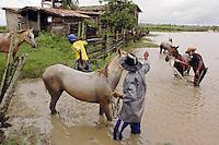 Vaqueiros lavam seus cavalos, após a volta do campo, fazenda Tuiuiu.<br /> Cachoeira do Arari, Pará, Brasil.<br /> 08/05/2006<br /> Foto Paulo Santos/Interfoto