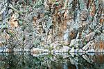 Abstract Rock Wall and Flowers Reflecting in Banks Lake, Washington