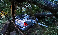 A vehicle sits under a fallen tree where an occupant was trapped due to tropical storm winds brought by Hurricane Michael, Thursday, Oct. 11, 2018, in Atlanta. Firefighters rescued the woman and she was transported to a hospital. (John Spink/The Atlanta Journal and Constitution via AP)
