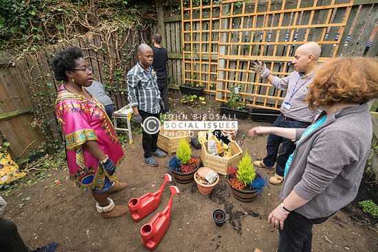 Rejuvenation of Circular Road community garden, London Borough of Haringey, London UK