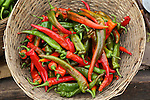 Chillies are used in every traditional Bhutanese meal. Farmers market on the roadside, between Punakha and Thimpu, Bhuthan..Bhutan the country that prides itself on the development of 'Gross National Happiness' rather than GNP. This attitude pervades education, government, proclamations by royalty and politicians alike, and in the daily life of Bhutanese people. Strong adherence and respect for a royal family and Buddhism, mean the people generally follow what they are told and taught. There are of course contradictions between the modern and tradional world more often seen in urban rather than rural contexts. Phallic images of huge penises adorn the traditional homes, surrounded by animal spirits; Gross National Penis. Slow development, and fending off the modern world, television only introduced ten years ago, the lack of intrusive tourism, as tourists need to pay a daily minimum entry of $250, ecotourism for the rich, leaves a relatively unworldly populace, but with very high literacy, good health service and payments to peasants to not kill wild animals, or misuse forest, enables sustainable development and protects the country's natural heritage. Whilst various hydro-electric schemes, cash crops including apples, pull in import revenue, and Bhutan is helped with aid from the international community. Its population is only a meagre 700,000. Indian and Nepalese workers carry out the menial road and construction work.