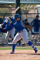 Chicago Cubs third baseman Wladimir Galindo (19) during a Minor League Spring Training game against the Los Angeles Angels at Sloan Park on March 20, 2018 in Mesa, Arizona. (Zachary Lucy/Four Seam Images)