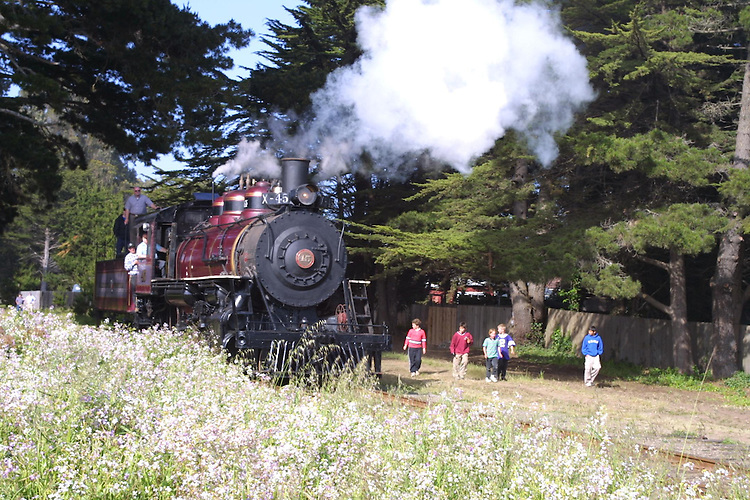 Steam engine #45, California Western Railroad's Skunk Train