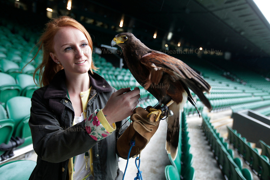 Mcc0038137 . Daily Telegraph..Wimbledon Day 7..Bird handler Imogen Davis is reunited with Rufus the Hawk on Centre Court at Wimbledon after he went missing last week. ..2 July 2012