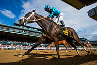 LEXINGTON, KY - OCTOBER 07: Calhon #6, ridden by Paco Lopez crosses the wire second in the thoroughbred Club of America Stakes at Keeneland Race Course on October 07, 2017 in Lexington, Kentucky. (Photo by Alex Evers/Eclipse Sportswire/Getty Images)