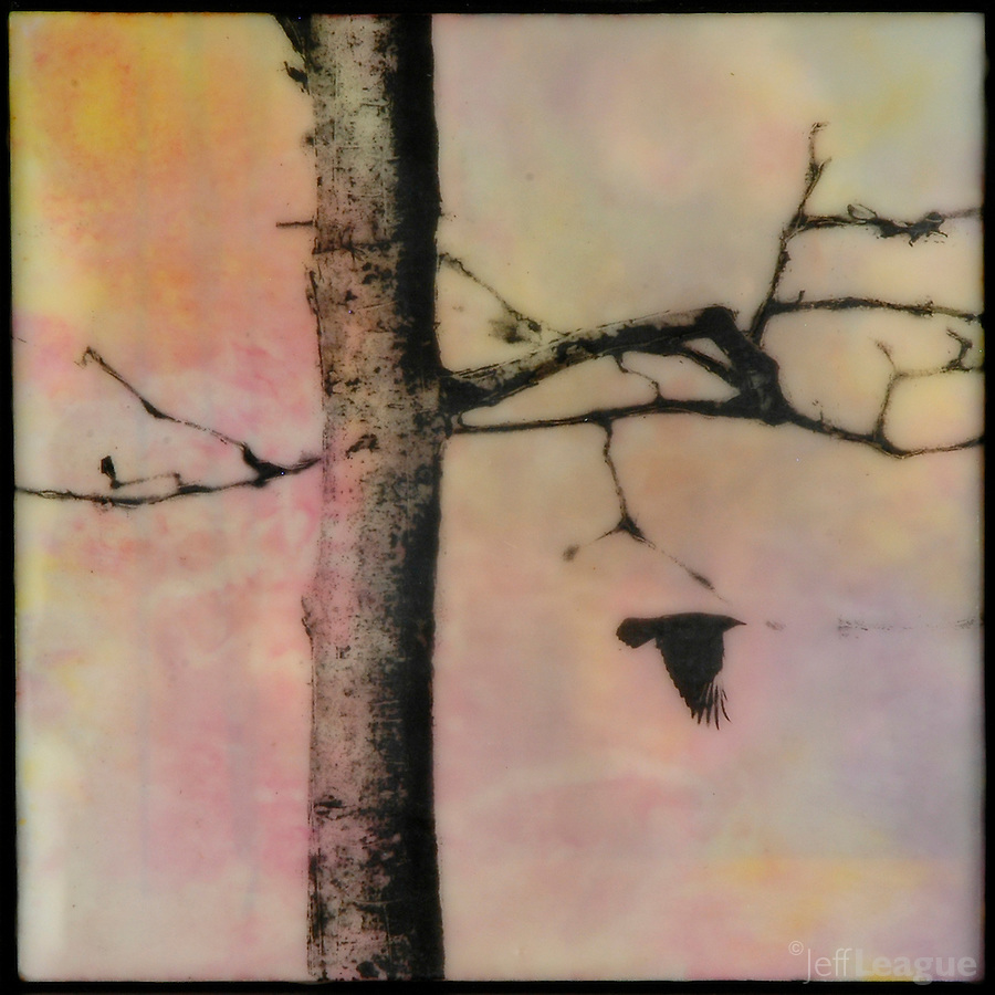 Mixed media photography with encaustic painting of bare autumn tree with bird flying in a pink orange sky
