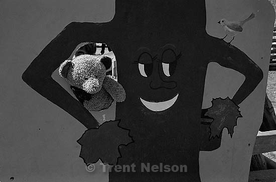 Nathaniel Nelson's teddy bear with syrup tree<br />