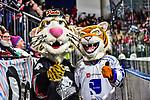 Maskotten Pucki ( Nuernberg) und das Maskottchen der Straubing Tigers im Spiel der DEL, Nuernberg Ice Tigers (dunkel) - Straubing Tigers (hell).<br /> <br /> Foto © PIX-Sportfotos *** Foto ist honorarpflichtig! *** Auf Anfrage in hoeherer Qualitaet/Aufloesung. Belegexemplar erbeten. Veroeffentlichung ausschliesslich fuer journalistisch-publizistische Zwecke. For editorial use only.