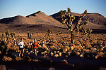 A photo of two women running through Joshua Trees in the desert near Lone Pine, CA.