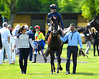 """Winner of The Willton Homes """"Confined"""" Novice Stakes (Colts & Geldings) Dive for Gold ridden by Robert Havlin and trained by John Gosden is led into the winners enclosure during Afternoon Racing at Salisbury Racecourse on 17th May 2018"""