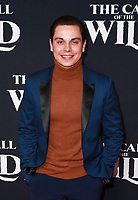 HOLLYWOOD, CA - FEBRUARY 13; Jake T. Austin at The Call Of The Wild World Premiere on February 13, 2020 at El Capitan Theater in Hollywood, California. Credit: Tony Forte/MediaPunch