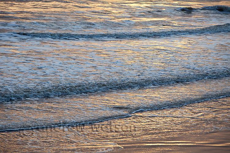Waves lapping beach at dawn.  Kewarra Beach, Cairns, Queensland, Australia .