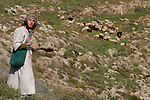 Shaltiel Dagan, 20, shepherds his herd near the Israeli settlement of Tekoa, West Bank.