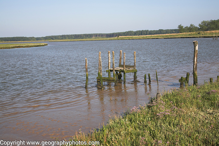 Old abandoned wooden jetty, Butley Creek river, Butley, Suffolk, England. Butley Creek river is one of many tidal estuaries along the coast of East Anglia. The reed beds and salt marsh provide a rich and important habitat for wildlife.