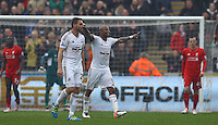 Andre Ayew of Swansea City celebrates scoring his goal to make the score 3-1 during the Barclays Premier League match between Swansea City and Liverpool played at the Liberty Stadium, Swansea on 1st May 2016