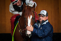 May 01, 2014: Assistant trainer, Alan Sherman and exercise rider Willy Delgado calm down derby favorite California Chrome while schooling at Churchill Downs in Louisville Ky. Alex Evers/ESW/CSM