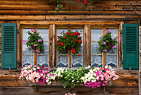 CHE, SCHWEIZ, Kanton Bern, Berner Oberland, Oberried am Brienzersee: blumengeschmuecktes Fenster | CHE, Switzerland, Bern Canton, Bernese Oberland, Oberried at Lake Brienz: flower decorated window