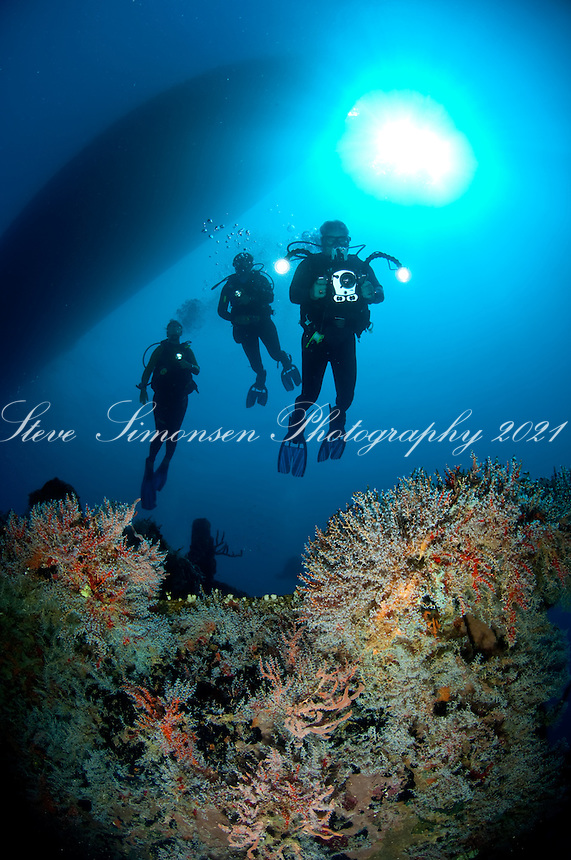 Divers on the Lerico Wreck<br /> Grenadines