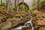 Maple Spring flows through the Hemlock Bridge in Acadia National Park, Maine, USA