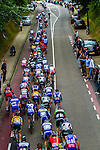 The bunch climbing the Cauberg, Stage 3 Buchten - Buchten, Ster ZLM Toer, Buchten, The Netherlands, 20th June 2014, Photo by Thomas van Bracht / Peloton Photos
