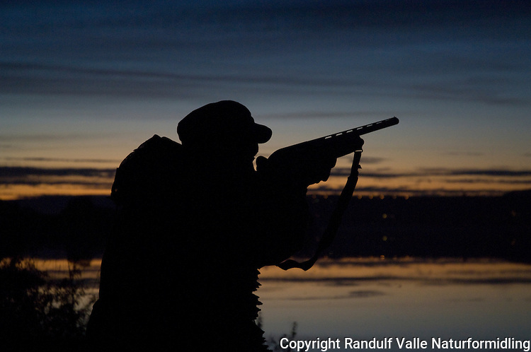 Mann med hagle i solnedgang ---- Man with shotgun at sunset