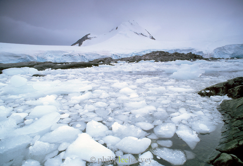 Icebergs and iceflow at the Antarctic Peninsula, Antarctica