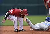 Razorbacks vs Florida 4/16/16