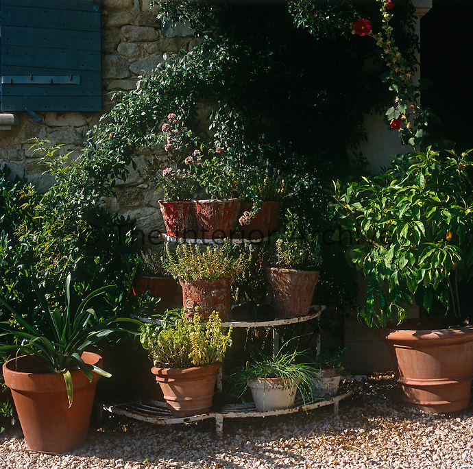 A collection of terracotta plant pots are grouped together on and around a wrought iron stand.