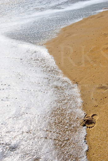 A single footprint in the yellow beach sand, about to be overtaken by white surf foam.