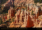 Fairyland Castle and Hoodoos, Early Morning, Fairyland Canyon, Bryce Canyon National Park, Utah
