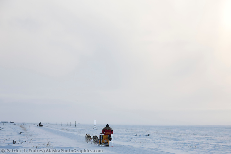 Musher Mitch Seavey uses his ski pole to help gain in leader Jeff King along the coast of Nome, near the checkpoint of Safety, during the 2008 All Alaska Sweepstakes sled dog race.