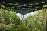 CANADA, Vancouver, British Columbia, view of the Lions Gate Bridge from Eldon Trail in Stanley Park, the bridge crosses the first narrows of the Burrard Inlet