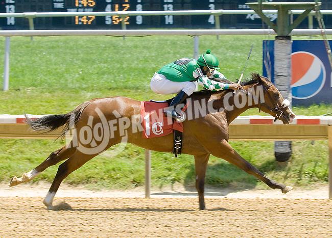 Rehab Mo winning at Delaware Park on 5/31/12