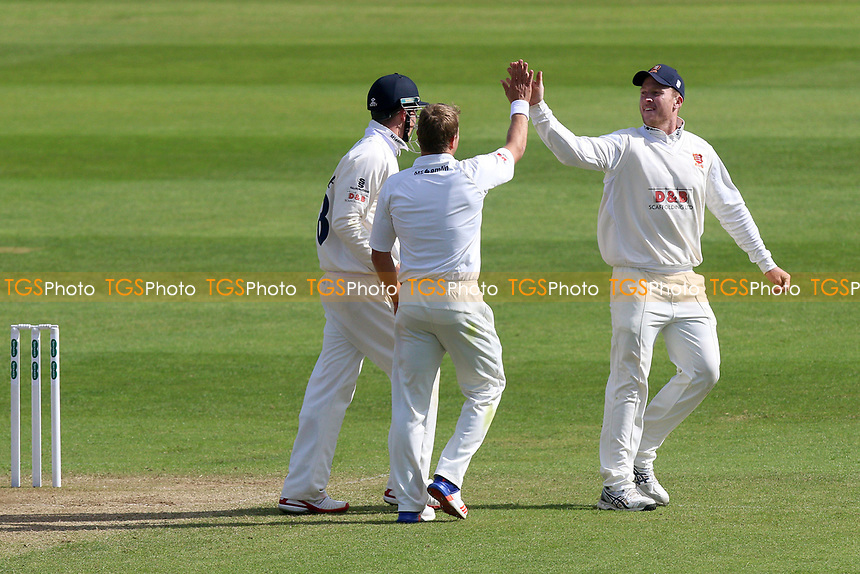 Neil Wagner of Essex is congratulated by his team mates after taking the wicket of Steven Davies during Somerset CCC vs Essex CCC, Specsavers County Championship Division 1 Cricket at The Cooper Associates County Ground on 15th April 2017